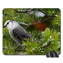 Beautiful Gray Jay Mouse Pad, Mousepad (Birds Mouse Pad)
