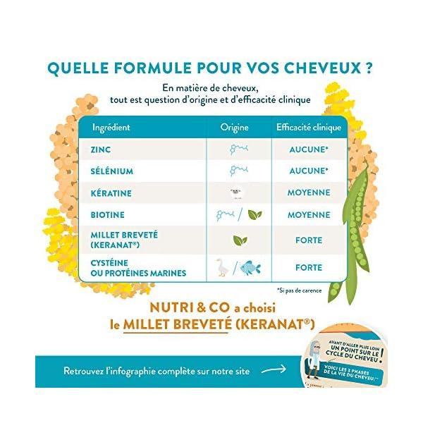 Biotine Végétale et Huile de Millet BIO | Complément Alimentaire Cheveux Pousse et Brillance | Vitamine B8 pour Soin de…