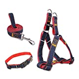 Dog Collars Harnesses & Leashes, 5ivepets No Pull Dog Harness Denim Dog Collar for Small/Medium/Large Dogs, Dog Training Leash Collar for Dog Walking Running(Above 55lbs)