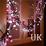 BOLUOYI String Lights for Bedroom,Double Color LED String Lights Christmas Wedding Party Decor Supplies