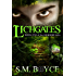 Lichgates: Book One of the Grimoire Saga (an Epic Fantasy Adventure)