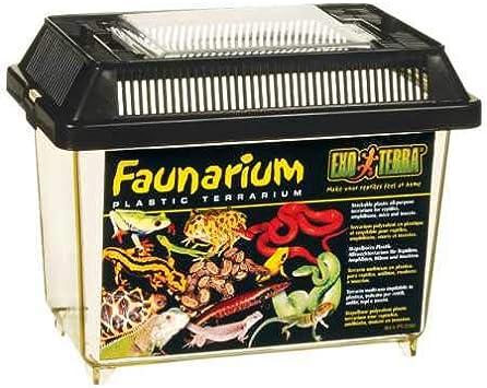 Amazon.com: Faunario Exo Terra, M, Multicolor: Mascotas
