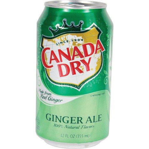 Canada Dry Ginger Ale Diversionセーフ B01IWUT758