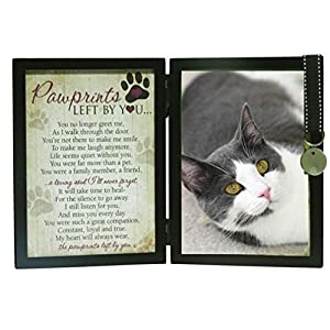 Pawprints Left By You Memorial 5x7 Frame for Cat with Pet Tag and Pet Memorial Clip on Charm