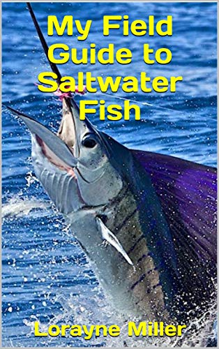 My Field Guide to Saltwater Fish by [Miller, Lorayne]