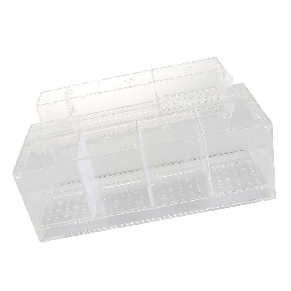 B Blesiya Aquarium Fish Shrimp Breeder Box Rearing Box for Fish Hatchery Accessory - 4 Grid