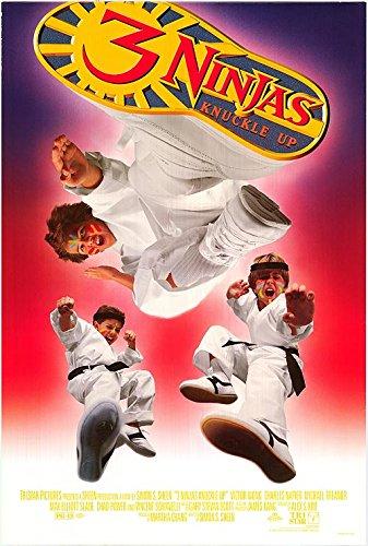 the 3 ninjas knuckle up - 8