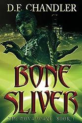 Bone Sliver: The Nova Wave: Book 1