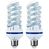 2 Pack BlueX 250 Watt Equivalent Spiral LED Bulb - 30 Watt 6000K 3300 Lumens Daylight - E26 Base Corn Light Bulbs - CFL Replacement for Warehouse, Garage, Barn, Patio, Restaurant, Park, Security Bulb