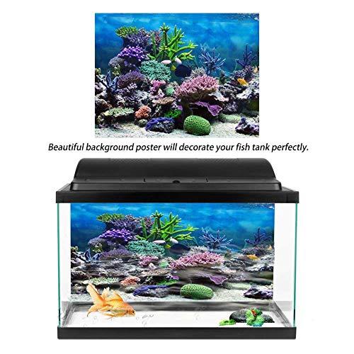 Filfeel Póster Adhesivo de PVC para decoración de Acuario con Fondo de Coral bajo el Agua: Amazon.es: Productos para mascotas