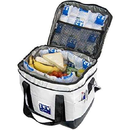 2e9d921e7 Amazon.com : Techni Ice High Performance Cooler Bag (24Qt) : Garden &  Outdoor