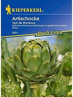 Artischocken pflanzen kaufen