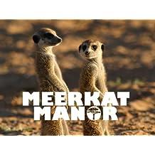 Meerkat Manor Season 1