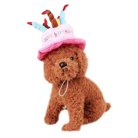 Nikgic - Gorro de cumpleaños para Perros, diseño de Mascota