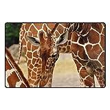 HEOEH Giraffes Africa Doormats Area Rug Rugs Non-Slip Floor Mat Indoor Outdoor 31x20 inch