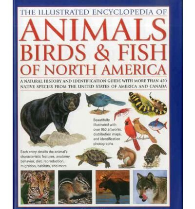 The Illustrated Encyclopedia of Animals, Birds & Fish of North America: A Natural History and Identification Guide with More Than 420 Native Species from the United States of America and Canada (Hardback) - Common - Fish Hardback