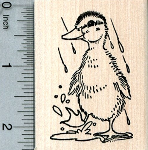 (Mallard Duckling Rubber Stamp, Cute Baby Duck in Rain)