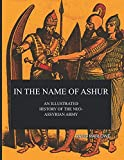 In The Name Of Ashur: An Illustrated History Of The Neo-Assyrian Army