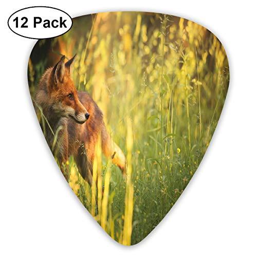 Guitar Picks 12-Pack,Fox In The Summer Forest Fresh Meadow Grass Wilderness Vixen Mammal Nature -