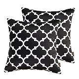 nioBomo 2-pack Super Soft Decorative Throw Pillow Case Cushion Covers 18