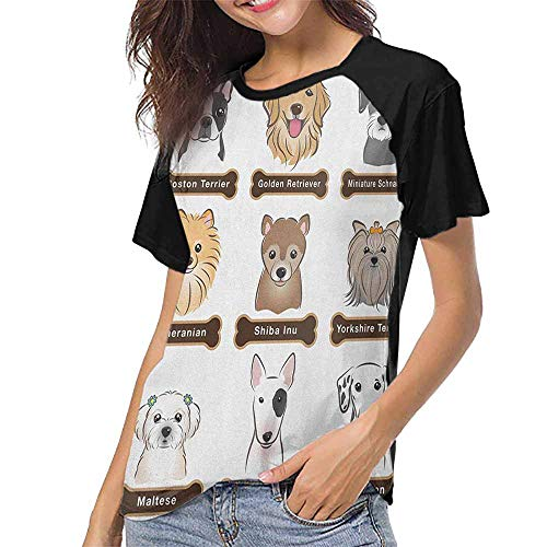 (Dog,Ladies Baseball Tee S-XXL(This is for Size Medium) Various Type of Dogs Nameplate Boston Terrier Domestic Animal Faithful Loyal,Raglan Short Sleeve Shirts)
