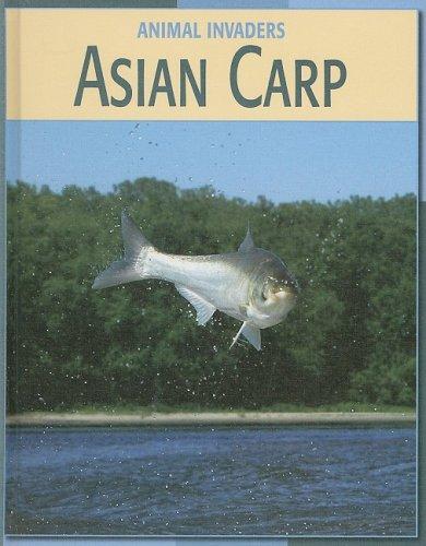 Asian Carp (Animal Invaders) ()
