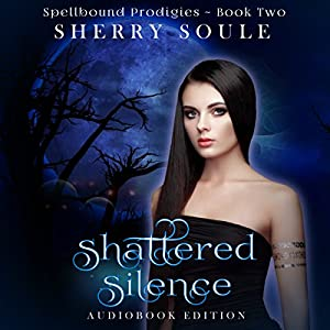 Shattered Silence Audiobook