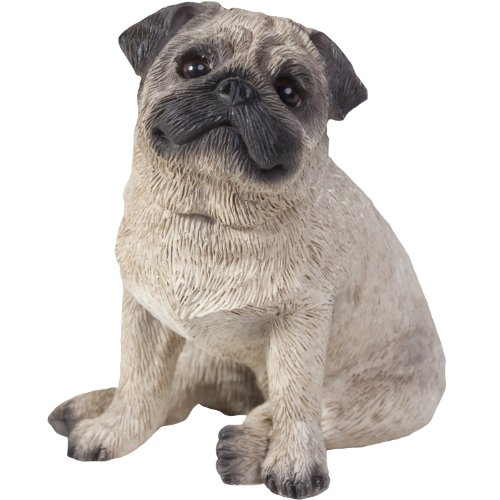 Sandicast Fawn Pug Sculpture, Sitting, Small Size