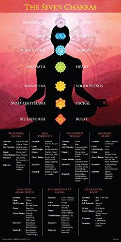 Chakras The Seven (Yoga Seven Chakras Inspirational Motivational Spiritual Poster Print, (Unframed 12 X 24))