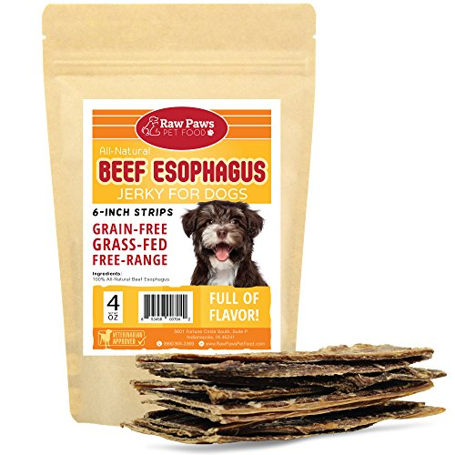 Raw Paws Pet Natural 6-inch Beef Dog Jerky Treats, 4-oz - Dog Taffy Sticks - Esophagus Dog Treats - Beef Gullet Sticks for Dogs - Glucosamine Chondroitin Dog Treats for Joints - Beef Strips for Dogs