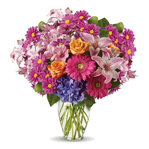 Mom's Garden by Plaza Flowers - Fresh and Hand ()