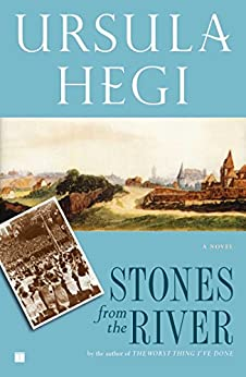 Stones from the River (Burgdorf Cycle Book 1) by [Hegi, Ursula]