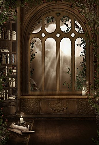 Design-a-room Halloween Backgrounds (3x5FT Laeacco Vinyl Photography Background Gothic Archtecture Indoor Room Design Nostalgic Retro Bookcase Candle Flowers Edge Pattern Gloomy Window Moon Photo Backdrop Studio Props)