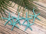 Metallic Turquoise Finger Starfish Christmas Tree Ornaments, Set of 6
