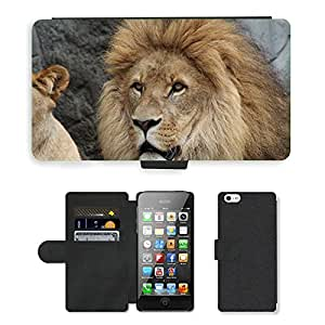 Super Stella Cell Phone Card Slot PU Leather Wallet Case // M00144371 Lion Panthera Leo Lioness // Apple iPhone 5 5S 5G