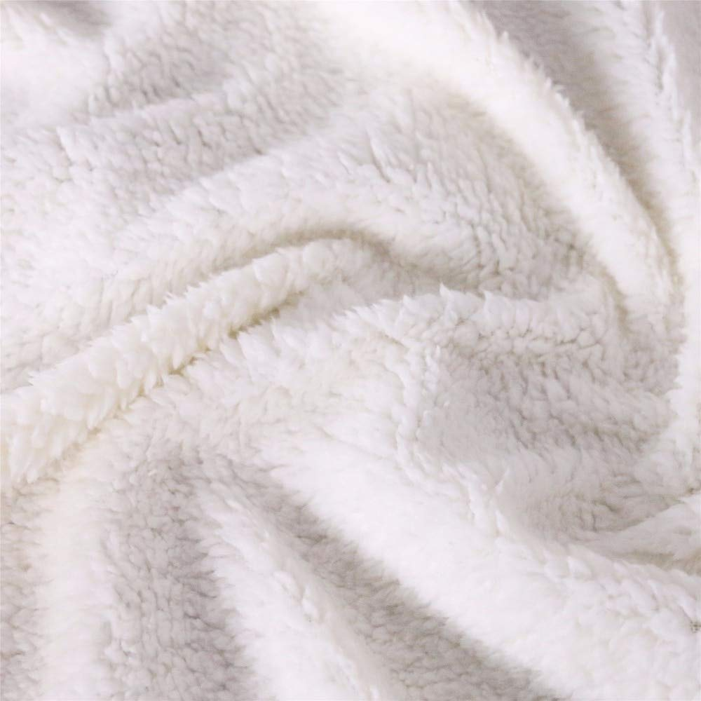 Yarncorp Bed Blankets-Dinosaur Family Blanket for Kids Cartoon Microfiber Jurassic Plush Sherpa Throw Blanket on Bed Sofa Boys Bedding (Style 02, 50x60 inches)