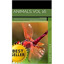 Animals vol 16: A trip through animal,pet,animals,pets,dog,cat,cats,dogs,george,creature,Richard Avedon,disgorge,spew,cat-o'-nine-tails,beer,cast,sensual,spue,image,curious,trail,darling,tag,regurgita ...