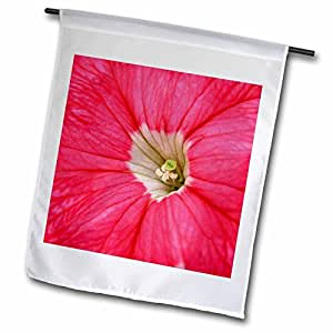 Beverly Turner Flora Design and Photography - Pink Petunia - 18 x 27 inch Garden Flag (fl_54412_2)