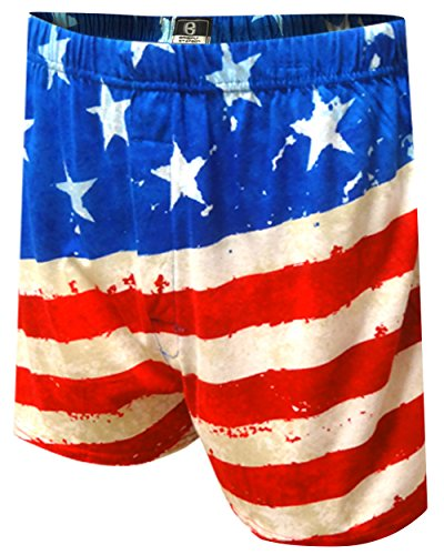 Briefly Stated Men's Painted USA Flag Boxer Shorts L