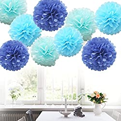 Nature World 18pcs Tissue Hanging Paper Pom-poms, Flower Ball Wedding Party Outdoor Decoration Premium Tissue Paper Pom Pom Flowers Craft Kit (Royal Blue Shade)