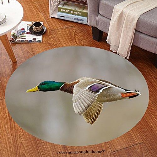 Sophiehome Soft Carpet 161149295 Mallard duck male in active flight Anti-skid Carpet Round 34 inches