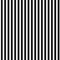 8x8ft White and black stripes photography backdrop,Children Portrait photography Backdrop photo props xt-3595