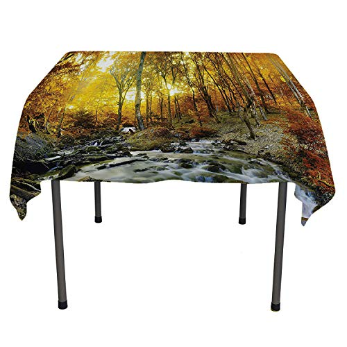 Lake House Decor Collection tablecloth clear protector Autumn Time River Creek Forest Falling Leaves Rocks Trees Foliage Sunbeams Branches Multi speing table cloth Spring/Summer/Party/Picnic 50 By 80