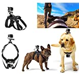 KENGEL Hound Dog Harness Adjustable Chest Strap Mount Belt for GoPro HERO 6/5/5 Session/4 Session/4/3+/3/2/1, Xiaoyi and Other Action Cameras