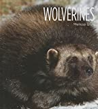 img - for Wolverines (Living Wild (Hardcover)) book / textbook / text book