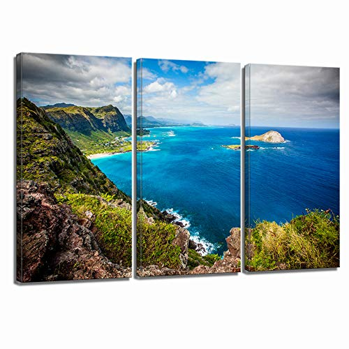 LevvArts Scenery Canvas Wall Art,Amazing Sea Landscape of Hawaii Pictures, Stretched and Framed Ready Hang,Modern Living Room Bedroom Home Decor-16x32inchx3pcs