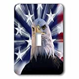 3dRose lsp_278587_1 USA, California. Composite of Bald Eagle and American Flag Toggle Switch, Mixed
