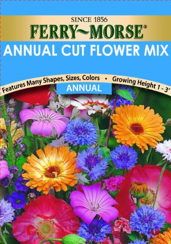 ferry-morse-annual-cut-flower-mixture-seeds-annual