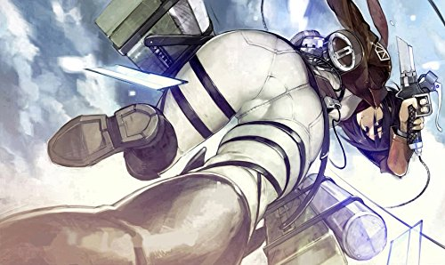 RFG REMOVE FROM GAME Mikasa View Attack on Titan Playmat 24 x 14 inch