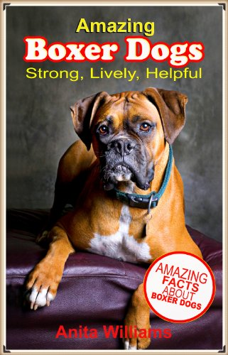 AMAZING BOXER DOGS: A Children's Book About Boxer Dogs and their Amazing Facts, Figures, Pictures and Photos: (Dog Books for Kids)